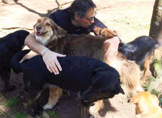 Casal alimenta, castra e resgata  cachorros de rua em Itapoá